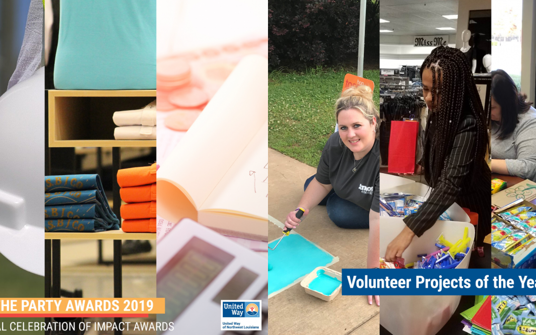 2019-2020 Celebration of Impact Awards: Volunteer Projects of the Year and Life of the Party Awards